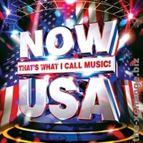Various Artists - Now Thats What I Call Usa Disc 3 Album Art